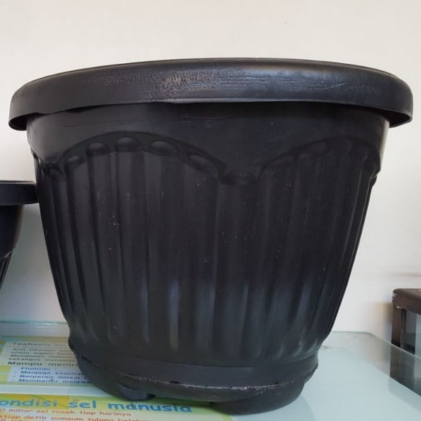 pot BLB uk 50cm